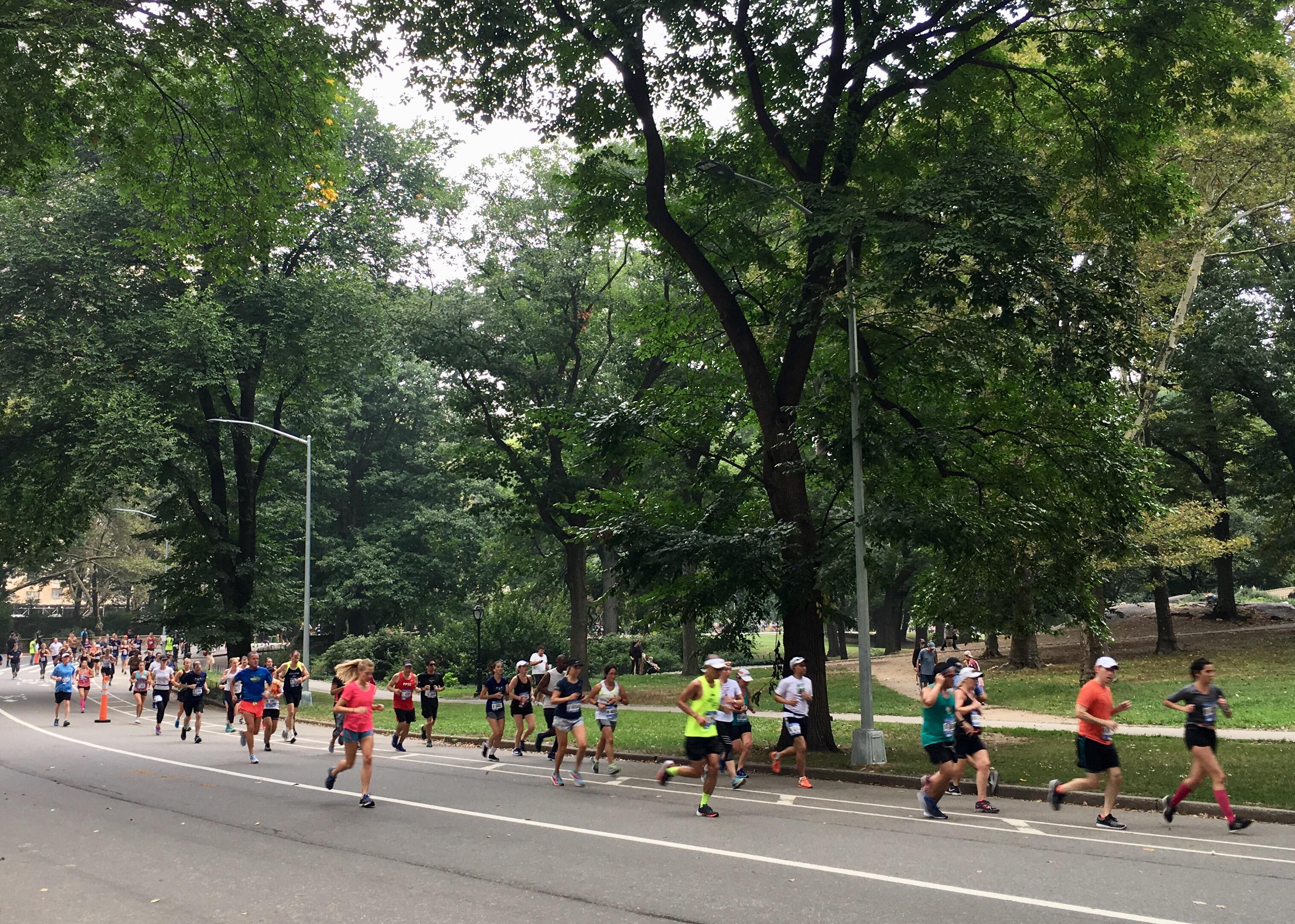 maratona-new-york-pettorali-rosa-associati