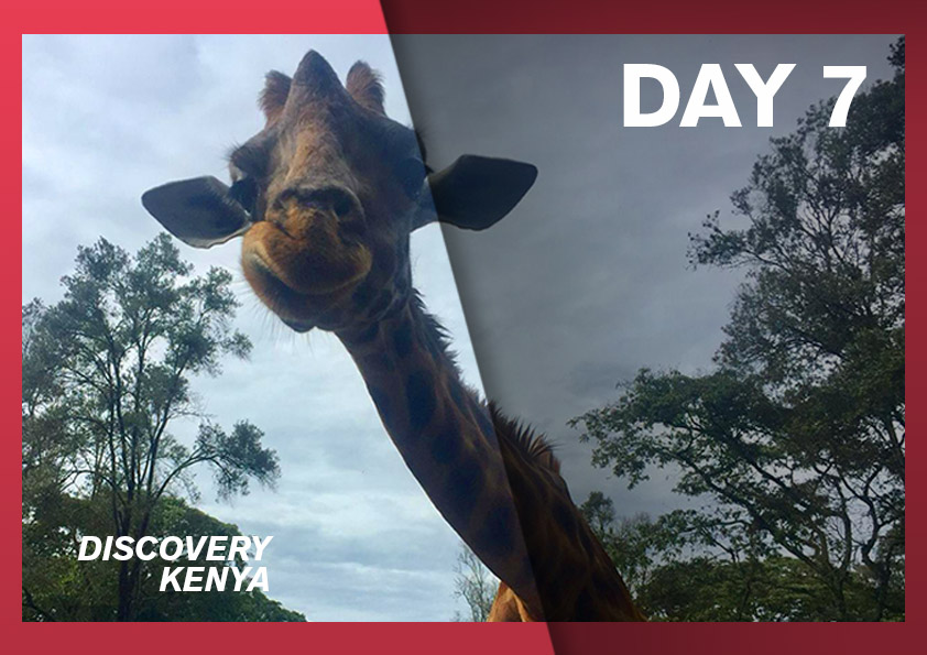 rosa-associati-discovery-kenya-cover-4-day-7