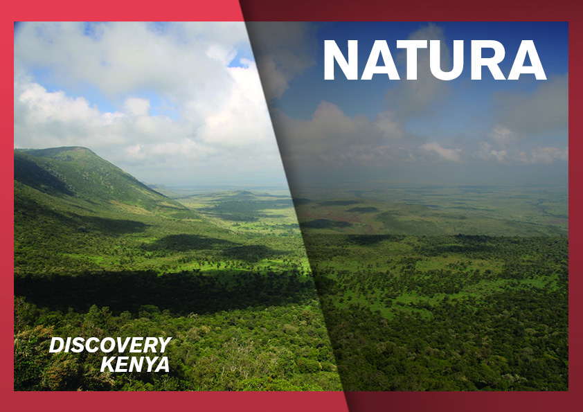 rosa-associati-discovery-kenya-cover-natura